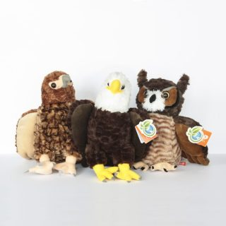 Stuffed Birds of Prey