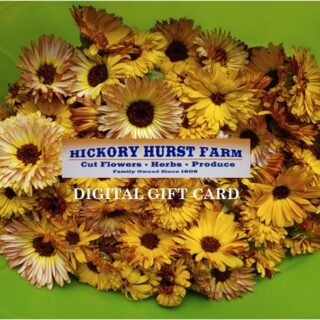 Hickory Hurst Farm Digital Gift Card
